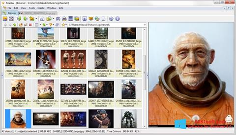 Snimak zaslona XnView Windows 8.1