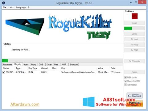 Snimak zaslona RogueKiller Windows 8.1