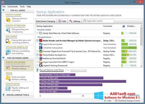 Snimak zaslona Reg Organizer Windows 8.1