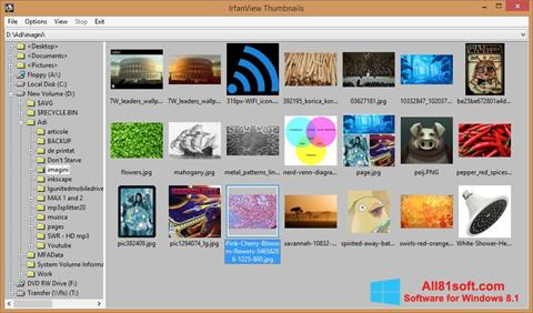 Snimak zaslona IrfanView Windows 8.1